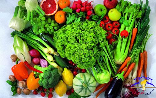 ویتامین برای قناری میوه و سبزیجات مفید برای قناری میوه های مفید برای قناری قناری و سبزیجات قناری کده قناری سالک قناری سبزیجات مفید قناری سایت قناری جوانه برای قناری انواع میوه برای قناری