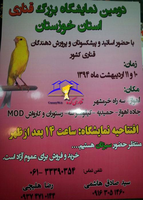 نمایشگاه های قناری 94 نمایشگاه های قناری نمایشگاه قناری خوزستان 94 نمایشگاه قناری خوزستان نمایشگاه قناری اهواز 94 نمایشگاه قناری اهواز نمایشگاه قناری 94 نمایشگاه قناری قناری پرورش قناری