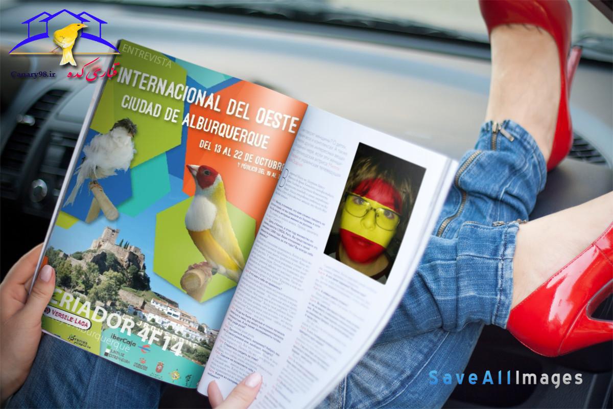 عکس های نمایشگاه بین المللی پرندگان زینتی آلبورکرکه اسپانیا