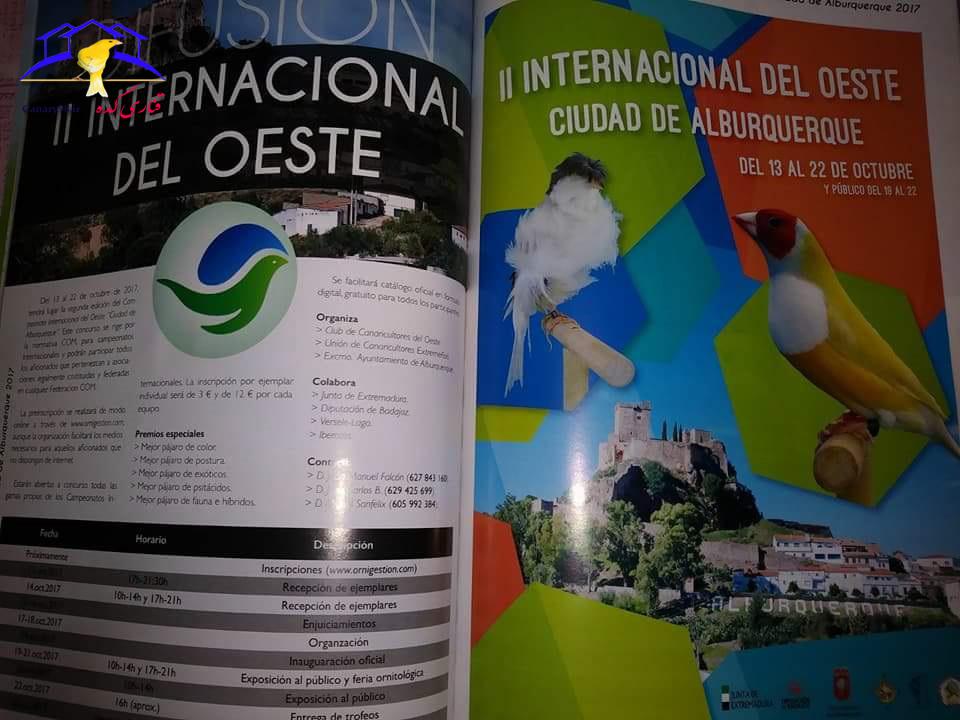 نمایشگاه قناری اسپانیا 2017 نمایشگاه قناری اروپا 2017 نمایشگاه خارجی قناری نمایشگاه بین المللی پرندگان زینتی آلبورکرکه اسپانیا قناری عکس های نمایشگاه قناری اسپانیا عکس قناری internacional del oeste ciudad de alburquerque