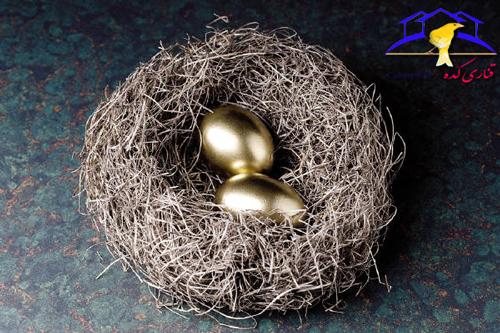 همزمان گذاشتن تخم های قناری نحوه برداشتن تخم های قناری قناری عوض کردن تخم های قناری با تخم مصنوعی و نحوه تست تخم قناری خارج کردن جوجه از تخم قناری تولید مثل قناری تعویض تخم های قناری با تخم مصنوعی تعویض تخم قناری با تخم مصنوعی تست نطفه دار بودن تخم قناری تست سلامت تخم ها تست سلامت تخم قناری تست سالم بودن تخم قناری تست تخم قناری با نور تست تخم قناری پرورش قناری باز نشدن تخم قناری باز کردن تخم قناری در روز 14 آموزش تست تخم های قناری آزمایش نطفه دار بودن تخم قناری the canary eggs with artificial seed and canary seed testing
