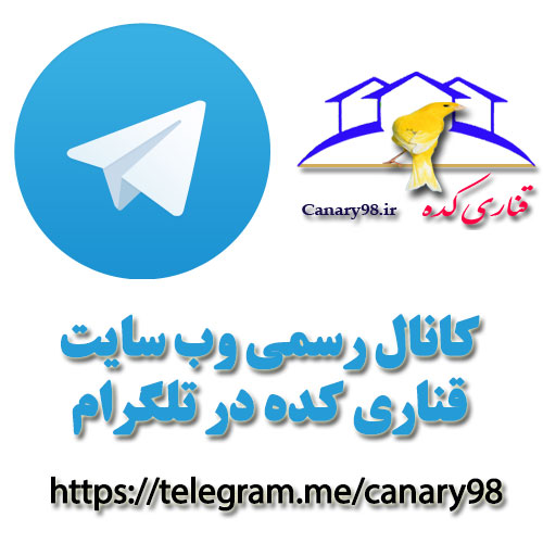 telegram-canary